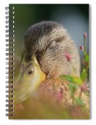 Duck 2 Spiral Notebook