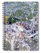 Duck Fight Spiral Notebook