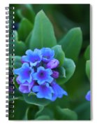 Dwarf Bluebell Detail Spiral Notebook