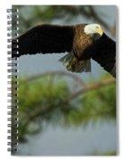 Eagle Flight 1 Spiral Notebook