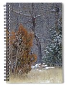 Early Winter On The Western Edge Spiral Notebook