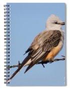 Edward Scissor Tail Spiral Notebook