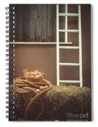 Eggs In Barn Spiral Notebook