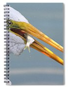 Egret Finishing Lunch  Spiral Notebook