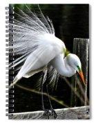 Egret Pride Spiral Notebook