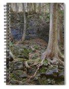 Elora 4 Spiral Notebook