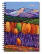 Elysian Spiral Notebook