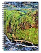 Emerald Tree Spiral Notebook