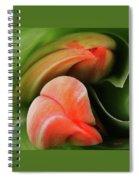 Emerging Tulips Spiral Notebook