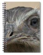 Emu Print 9053 Spiral Notebook