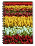 Endless Beautiful Tulip Fields Spiral Notebook