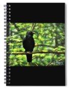 Enjoying Forest Light Spiral Notebook