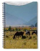 Equine Valley Spiral Notebook
