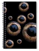 Eyes Have It Black Spiral Notebook