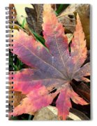 F2784 Spiral Notebook