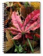 F2786 Spiral Notebook
