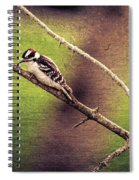Faded Canvas Woodpecker Spiral Notebook