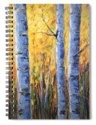 Fall Aspen Iv Spiral Notebook