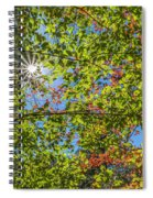 Fall Beginnings Spiral Notebook