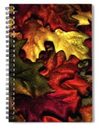 Fall Is On The Ground Spiral Notebook