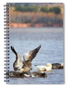 Fall Migration At Whittlesey Creek Spiral Notebook