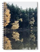 Fall Mirrors 2 Spiral Notebook