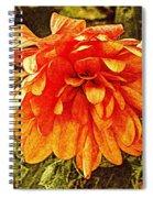 Fall Mums Spiral Notebook