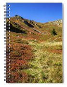 Fall On The Mountains Spiral Notebook