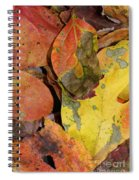 Falling Into Fall Spiral Notebook