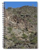 Family Of Saguaro Spiral Notebook