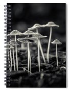 Fanciful Fungus-2 Spiral Notebook