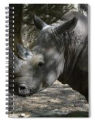 Fantastic Profile Of A Rhino With A Long Horn Spiral Notebook