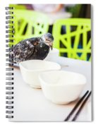Fast Food Asian Pigeon Spiral Notebook