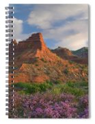Feather Dalea, Caprock Canyons State Spiral Notebook