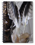 Feathers 3 Spiral Notebook