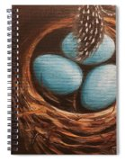 Feathers And Eggs Spiral Notebook