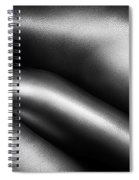 Female Nude Silver Oil Close-up 3 Spiral Notebook