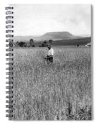 Field Of Wheat Campbell S Plains  Darling Downs Spiral Notebook