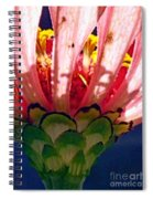 Filtered Spiral Notebook
