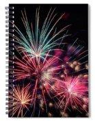 Fireworks 2019 One Spiral Notebook
