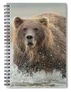 Fish Coastal Brown Bear Of Alaska Spiral Notebook