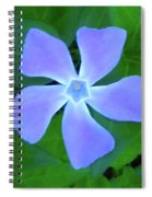 Five Petals Spiral Notebook