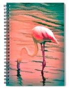 Flamingo Art Spiral Notebook