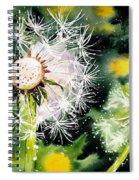 Fleeting Moment Spiral Notebook