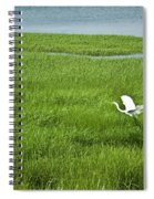 Salt Marsh Flight Spiral Notebook