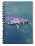 Floating Turtle Spiral Notebook