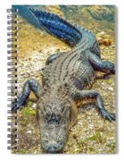Florida Gator 2 Spiral Notebook