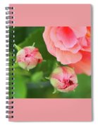 Flower Buds Rising Spiral Notebook