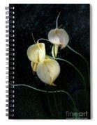 Flowerography Spiral Notebook