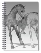 Foals Black And White Bleached Spiral Notebook